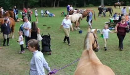 48th Annual Horse Show & Country Fair Attracts Thousands At Blue Mountain
