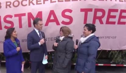 Rockefeller Center Christmas Tree From Area Hamlet Arrives In Manhattan