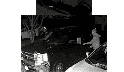 Know Them? Police Look To ID Suspects In Vehicle Burglaries