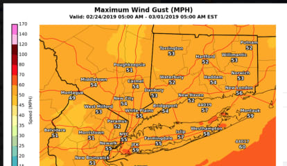 High Wind Warning: Gusts Near 60 MPH Expected To Blow Down Trees, Power Lines