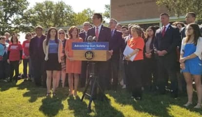 NY Schools First To Have 'Red Flag' Power On Guns: Here's What It Means