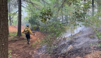 Wildfire In Connecticut State Park Contained