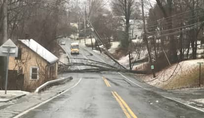 Two Sections Of 9W Closed Due To Downed Trees, Poles