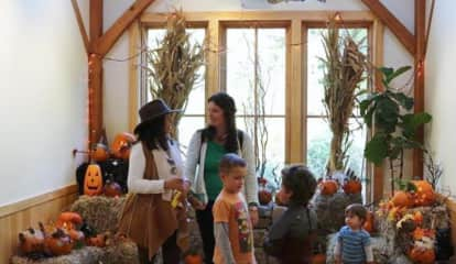 'Hoot & Howl' At Darien Nature Center's Annual Halloween Event