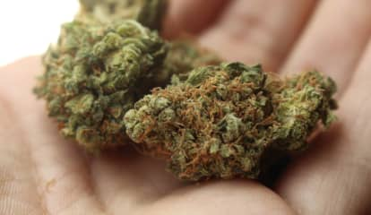 Can You Be Tested Or Fired For Smoking Pot? New York State Offers Guidance To Residents