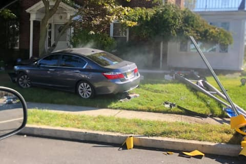 Car Topples Light Pole, Rams Tree At Busy Hackensack Intersection
