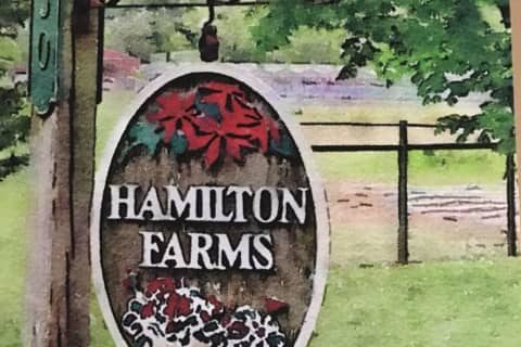 'You Will Be Missed': Closing Of Boonton's Hamilton Farms Marks End Of An Era