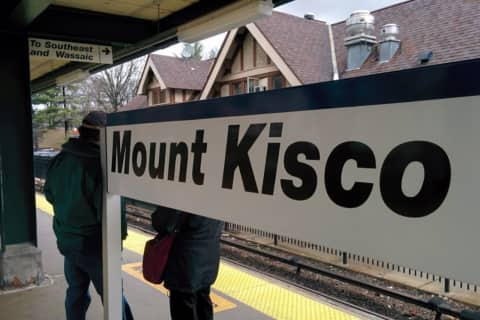 Police: Woman With Warrant Arrested At Metro-North Station Searching For Loose Change