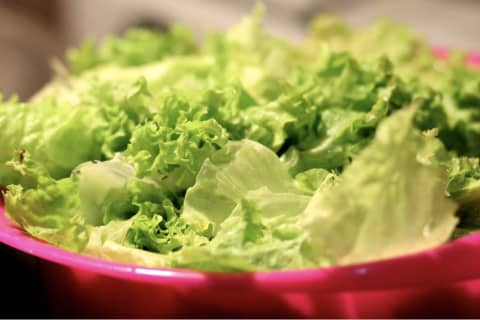 Recall Issued For 97K Pounds Of Salad Products Due To E. Coli Scare