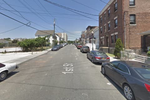 Police Rescue Westchester Woman Violently Attacked By Own Dogs