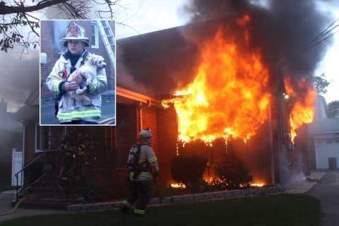 HEROES: Pets Rescued In Fierce Lodi Fire