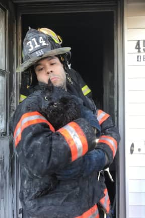 Homeowner Hospitalized, Cat Saved, Two Firefighters Injured In Westchester Blaze
