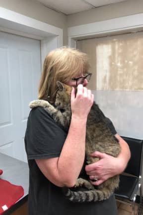 Cat Missing For 11 Years Reunited With Owner Thanks To SPCA In Area