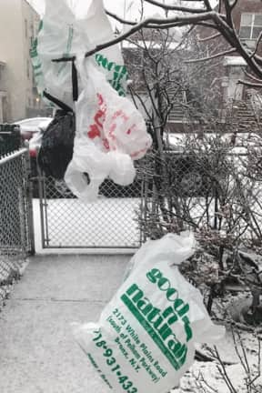New Move To Ban Single-Use Plastic Bags Underway In New York