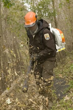 Another Westchester Community Approves Leaf Blower Limitations