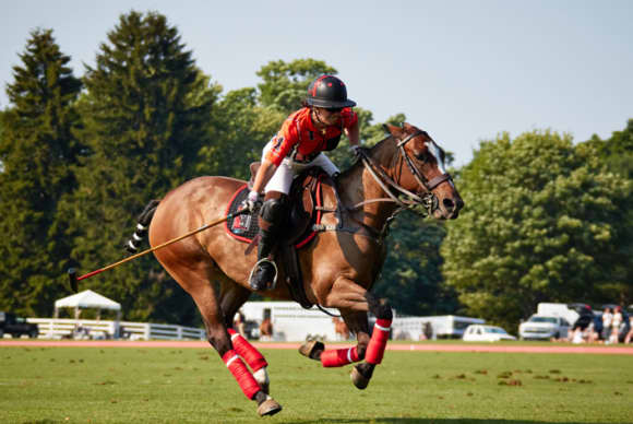 Annabelle Gundlach: from show jumper to polo patrona