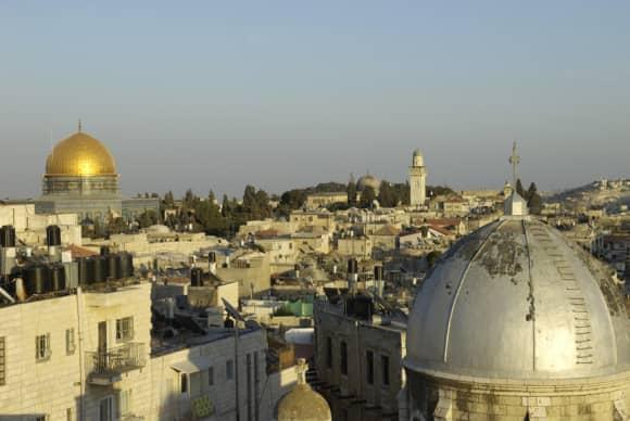 Jerusalem: City of Gardens
