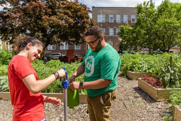 Fairfield University project tracks Bridgeport's community gardens