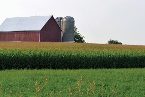 U.S. Sen. Murphy reintroduces bill seeking student loan forgiveness for new farmers