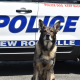 The New Rochelle Police Department said goodbye to Chase last week as he enters retirement.