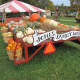 Jones Family Farm in Shelton promises lots of fall fun with its pick your own pumpkins.