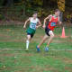 Sophomore Luke Carmosino took third place overall in the Westchester County cross-country meet.