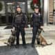 The Stratford Policer K9 Unit has three trained K9s and handlers, which are assigned to each shift.