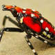 The lanternfly is reaping havoc among newly planted fruit trees in New York state.