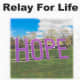 Patterson's 10th annual Relay for Life is all-day until midnight on Saturday, June 9.