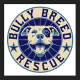 Animal Cruelty Investigation Centers On President Of Rescue Group Based In New Canaan