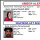 A look at info in the Amber Alert.