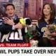 "The four pups from Danbury Animal Welfare Society during a segment on CNN's ""New Da"" show."
