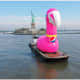 Pink Flamingo On Hudson? It Was All Part Of Pepsi Marketing Campaign