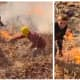 KNOW ANYTHING? Police Seek Delaware Water Gap Arsonists