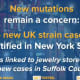 COVID-19: New Cases Of UK Variant Found In Suffolk County Patients