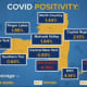 The breakdown of positive infection rate across New York State