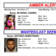 NY Amber Alert Canceled After 9-Month-Old Abducted Girl Returned