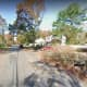 Long Island Woman Critically Injured While Cutting Down Tree