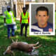 'Disgusting': Bergen County Man Dumped At Least 3 Deer Carcasses In Newark, Police Say