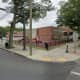 Children Bit, Scratched By Wandering Dog At CT School