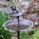 Troops installed bird baths and feeders in Scarsdale as part of their project.