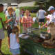 Woodcock Nature Center allowed kids to check out snakes and other animals at the Wilton Street Fair.