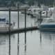Boats in Stamford Harbor