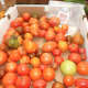 Some of the Ambler Farm produce is on sale Sunday during the Wilton Farm's annual fall festival.