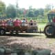 It's not a fall festival without a hay ride at Ambler Farm's fall festival Sunday.