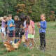 Students visited Stone Barns to explore the connection between farm life and harvesting.