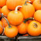 Pumpkins are ideal for beauty DIY projects, according to South Salem's Eco-beauty expert Indie Lee.