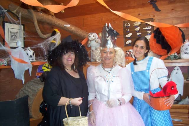 The Country Childrens Center in Katonah will host its annual Family Fall Festival Oct. 24.