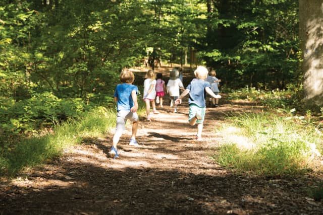 Children participating in one of the New Canaan Nature Center's many events. Image courtesy New Canaan Nature Center.