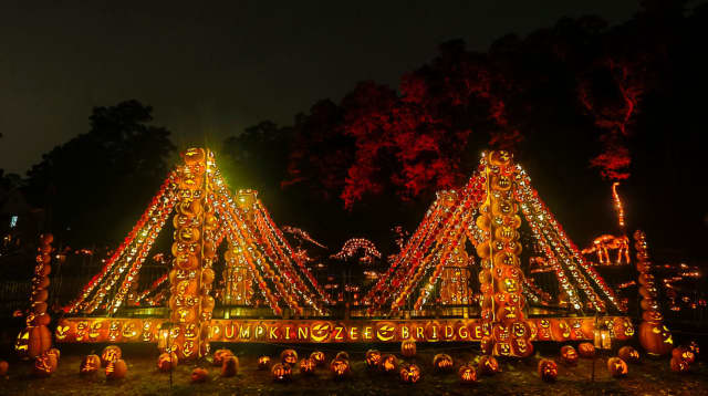 The 80-foot-long Pumpkin Zee Bridge is among the new displays at the Great Jack O'Lantern Blaze® in Croton-on-Hudson this year. The annual fall event has gotten so huge that its organizer, Historic Hudson Valley, has added six days to its calendar.